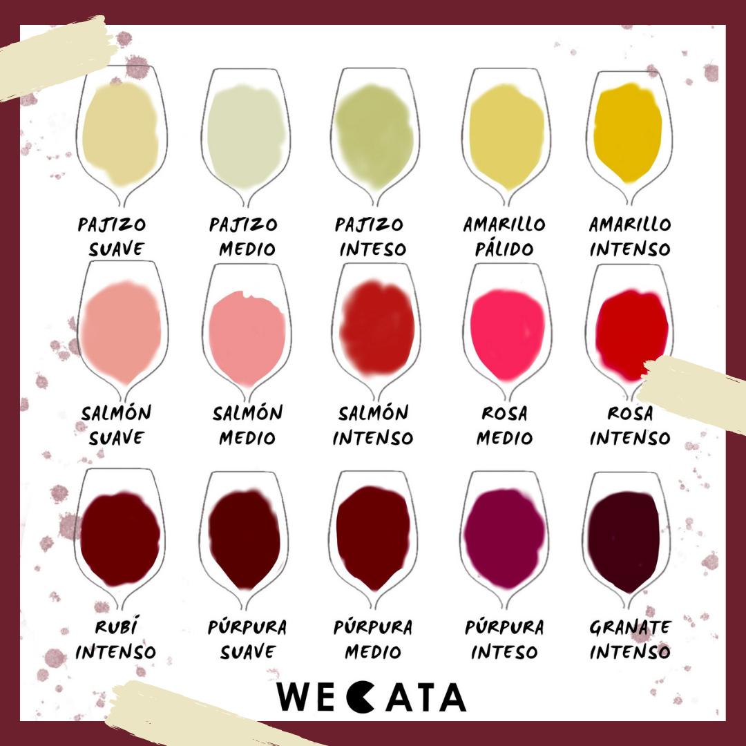 Tonalidades del vino
